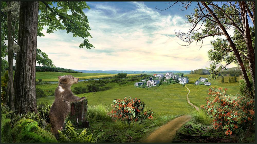 Разработка сайта коттеджного поселка «Мишкин лес» - 3